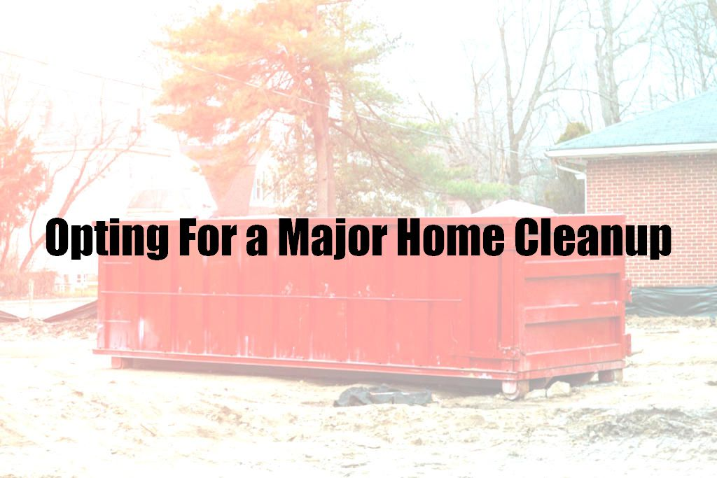 Opting For a Major Home Cleanup
